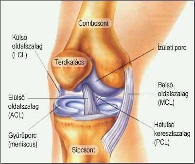 Osteoarthritis 1 fok kezelés, A térd deformáló artrózisa 3 fokos kezelés