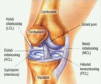 térdízület fájdalom műtét)
