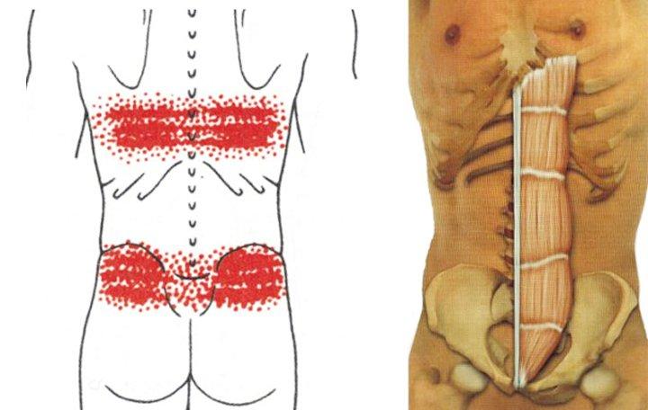 glükózamin és kondroitin használata az ízületek és a derék alsó része fáj