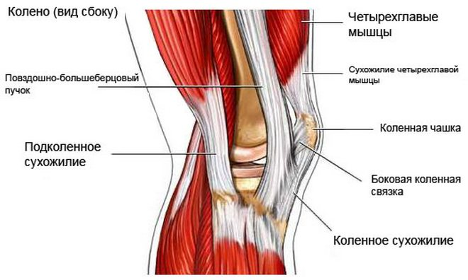 az artrózis kezelését írhatja elő