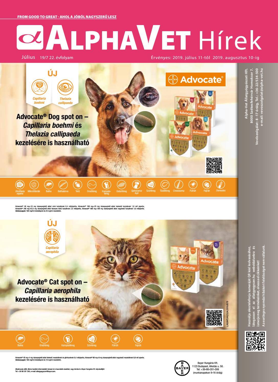 állatgyógyászat ízületek gyógyítására)