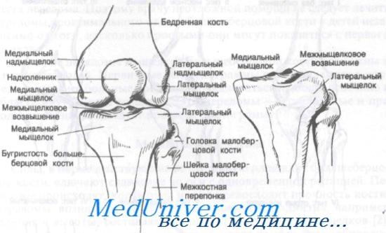 törékeny ízületek kezelése)