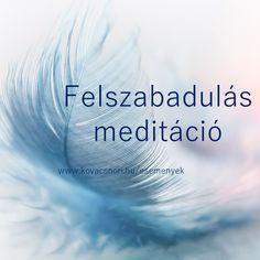 közös kezelési meditáció)