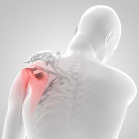 vállízület fájdalom edzés közben