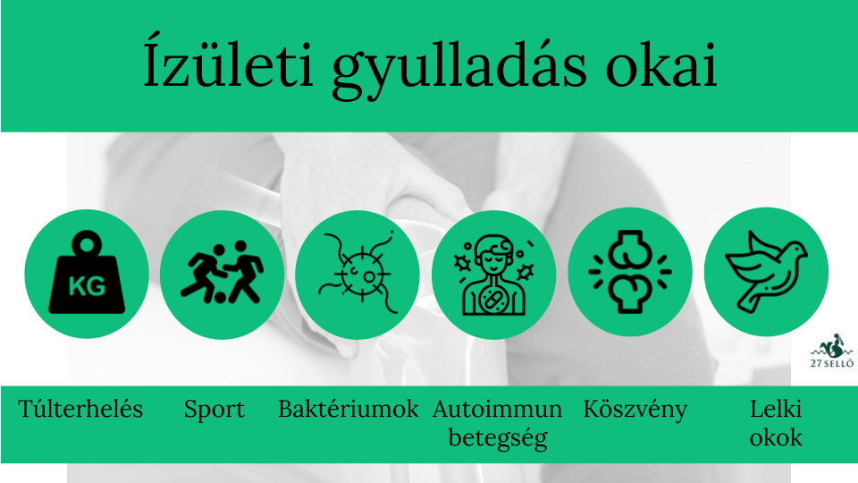 ízületi betegségeket okozó fertőzések)
