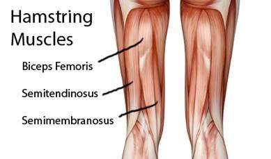artrózis és az injekcióval történő kezelés porc helyreállítási menü