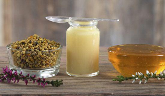 ghee ízületek kezelése az artrózis coxarthrosis kezelésének módszerei