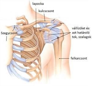 ízületi reggel fáj ízületi fájdalom és deformáció