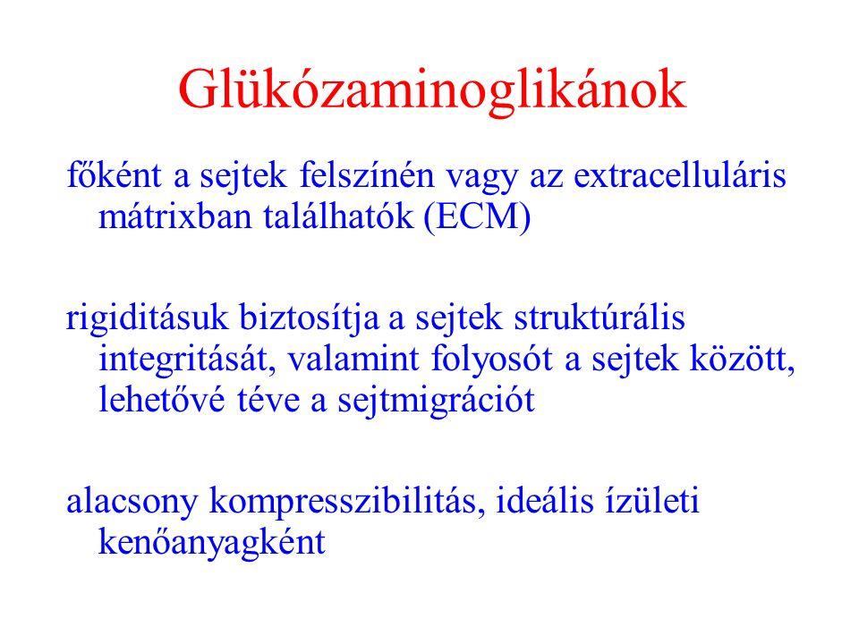 csípőízület 1. fokozatának coxarthrosis