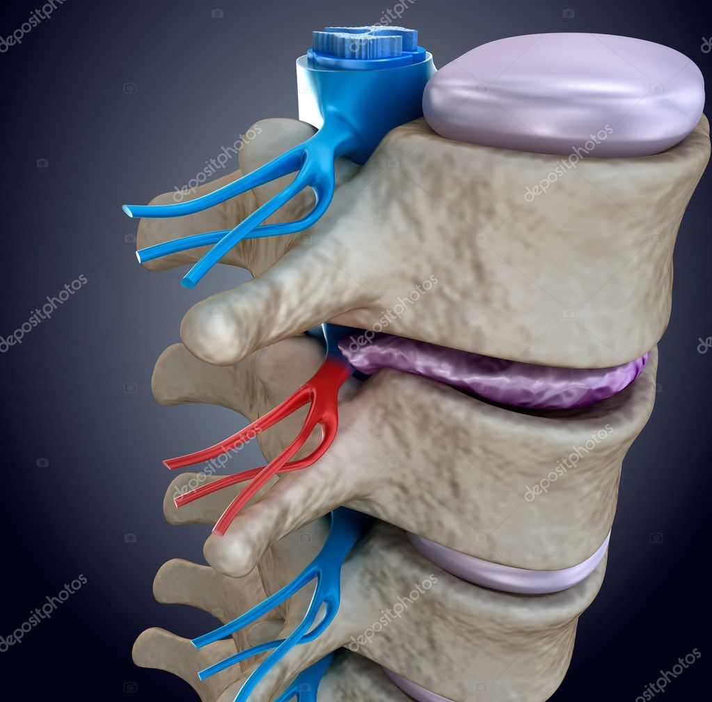 gerincvelő csontritkulás kenőcskezelés)