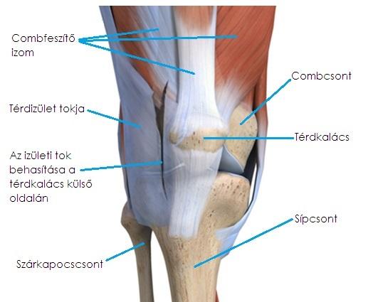 a térd artrózisának nem műtéti kezelése