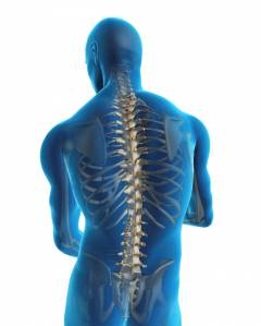 a gerinc ízületeinek deformáló artrózisa a cervicothoracicus gerinckészítmények osteochondroze