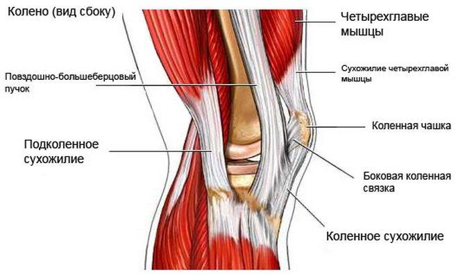 2. szakasz a térd deformáló artrózisa)