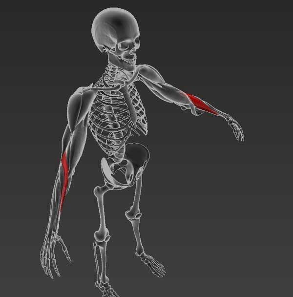 a tarsális ízületek deformáló artrózisa