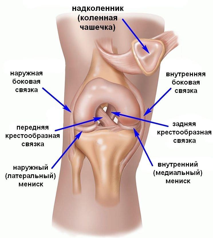 a térdízület belső oldalsó ínszalagjának repedésének kezelése