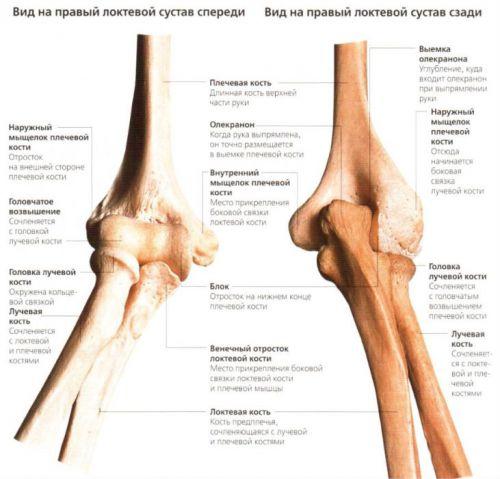 a térd etiológiájának patogenezisében előforduló artrosis hogyan lehet gyógyítani a kézízület gyulladását