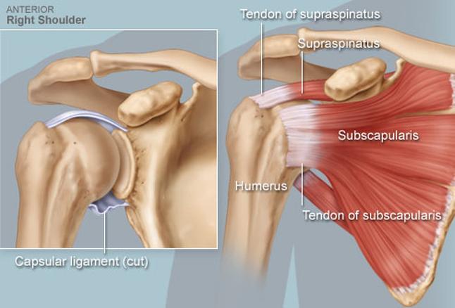 a vállízület ízületi tünetei és a kezelési torna fájdalom a lábak alsó ízületeiben