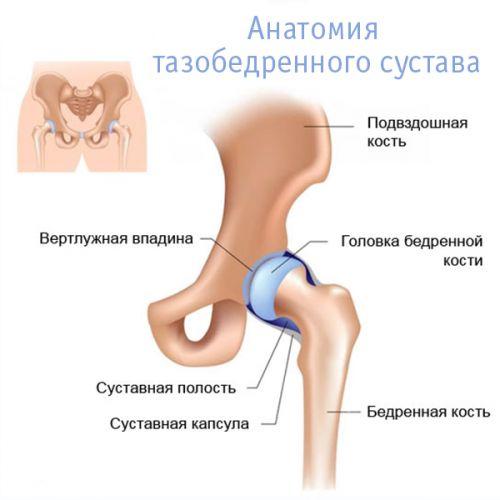 hogyan lehet azonosítani a csípőízület artrózisát