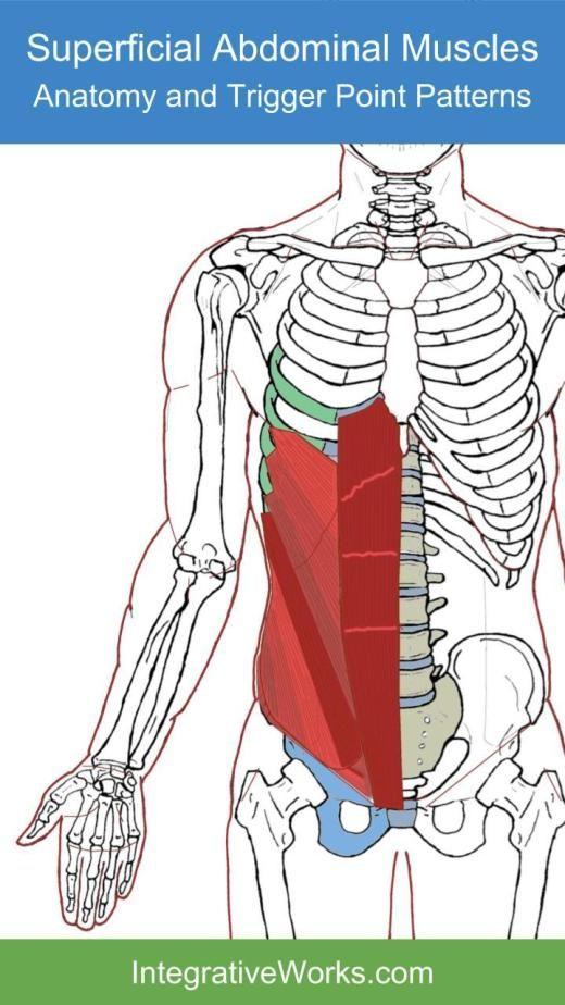 tüsszentő fájdalom az ízületekben illóolaj ízületi fájdalmakhoz