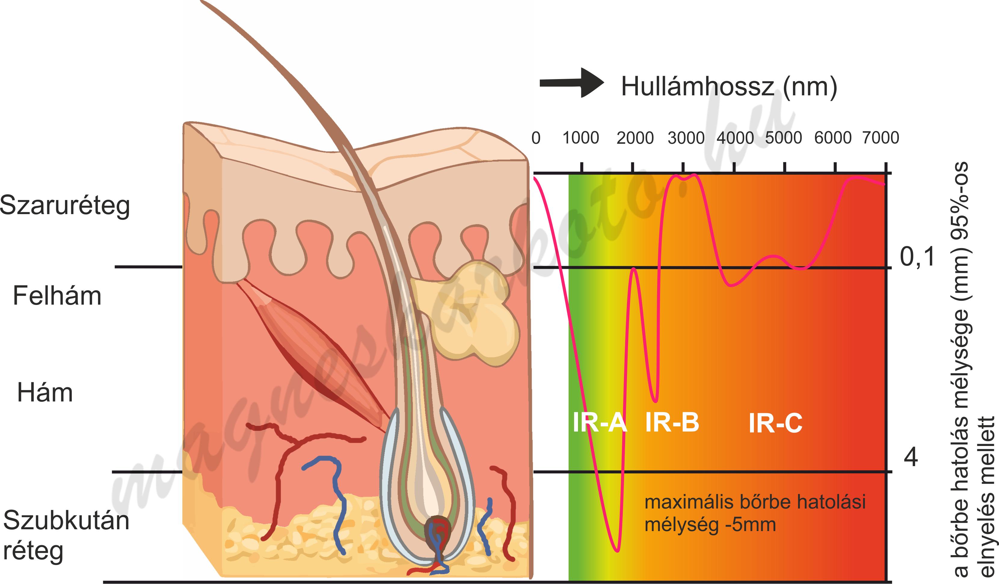infravörös sugárzás az ízületek kezelésében