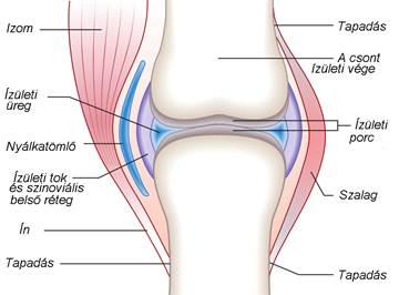 Artrózis és az injekcióval történő kezelés.