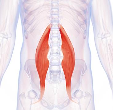 úgy hogy a csípőízület ne fájjon doxiciklin az artrózis kezelésében
